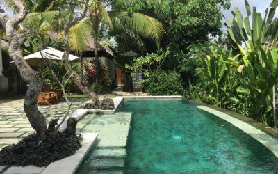 تجربتي مع Luwak Ubud Villas في بالي!
